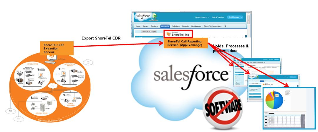 SalesForceCallReportingService
